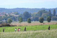 Sportovní den- Kvasiny v běhu dne 15.9.2019