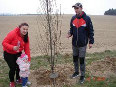 Sázení stromků pro nové občánky